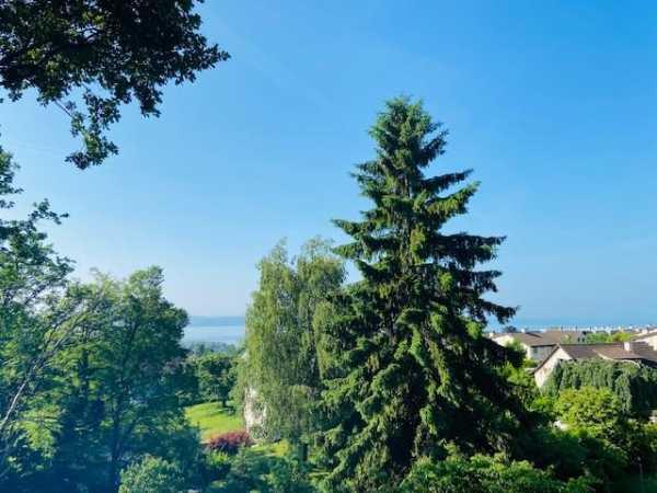 Maison Saint-Blaise  -  ref M-21-001 (picture 3)