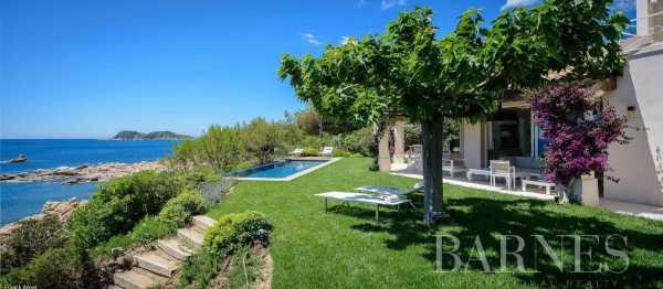 Villa Saint-Tropez  -  ref 2648932 (picture 3)