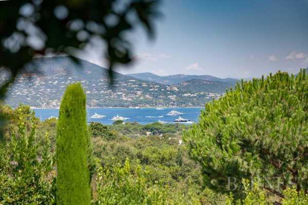 Villa Saint-Tropez  -  ref 2305375 (picture 3)