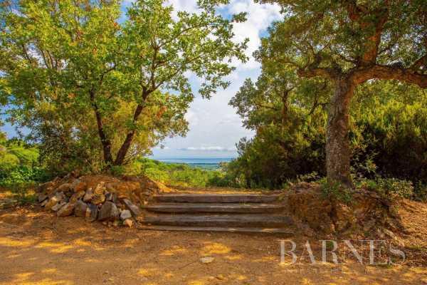 Villa Ramatuelle  -  ref 4361041 (picture 3)