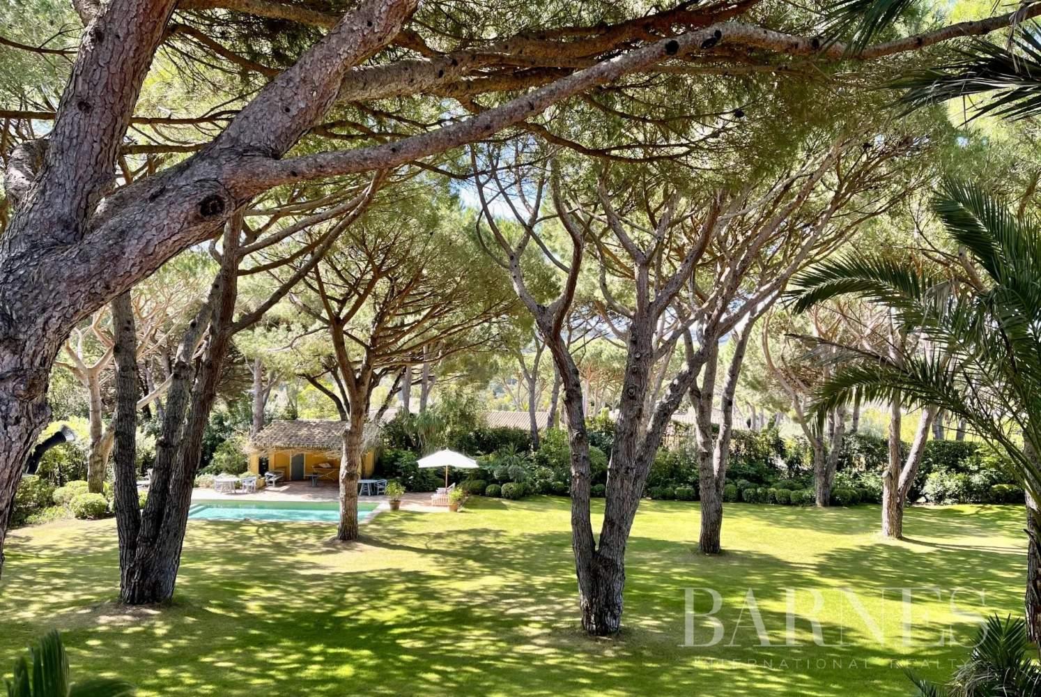 Saint-Tropez  - Villa 16 Pièces 12 Chambres - picture 5