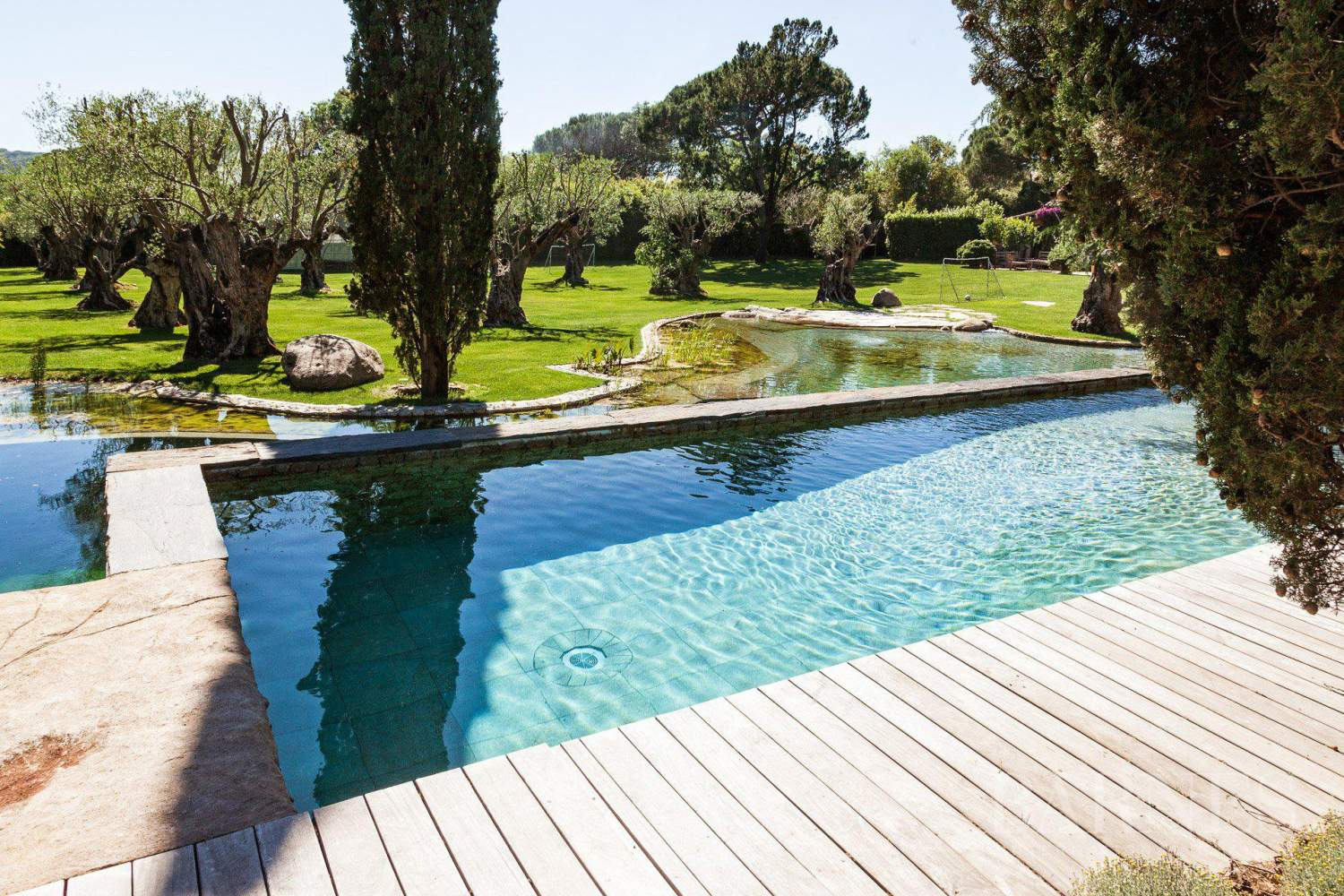 GASSIN - PEACEFUL AND CHARMING VILLA - 4 bedrooms - 2 pools picture 16