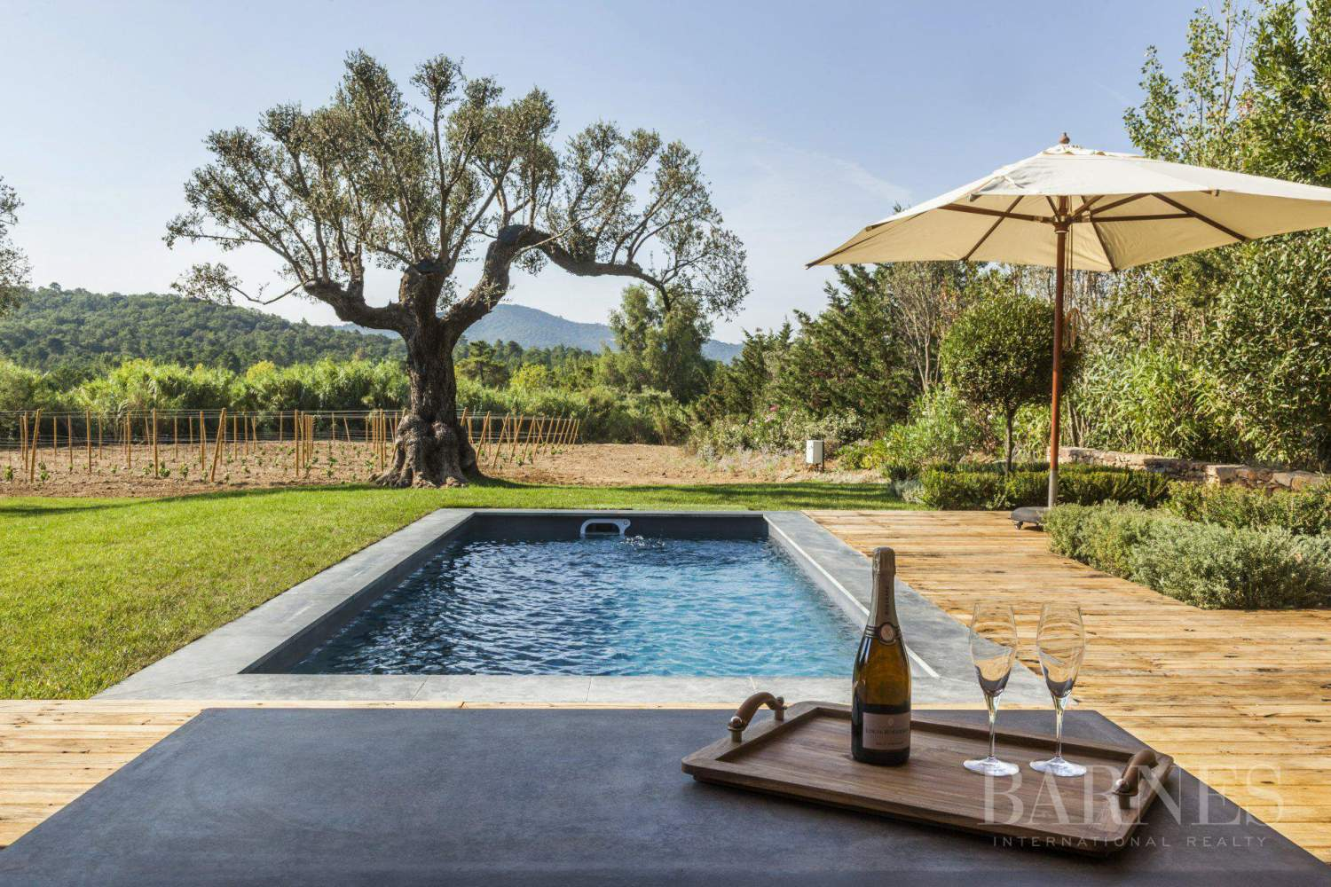 Gassin - Magnificent charming villa in the heart of the vineyards picture 2
