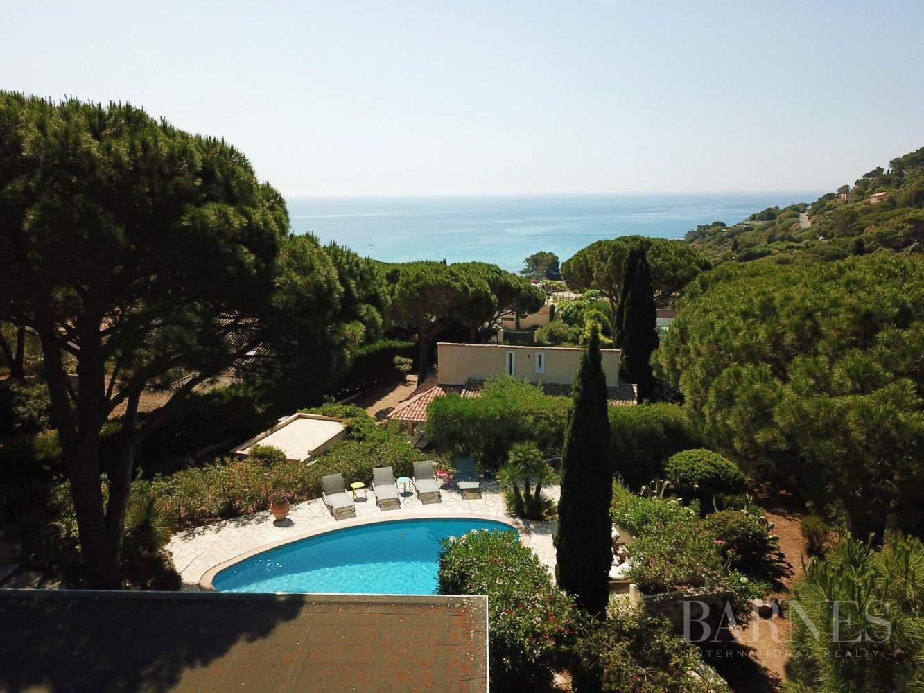 Gulf of Saint-Tropez- Ramatuelle - Quartier de l'Escalet, Nice sea view property picture 17