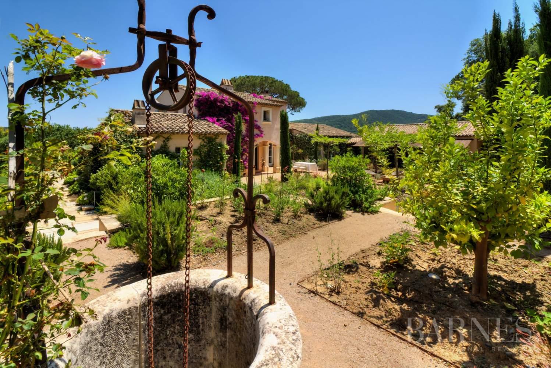 GASSIN - Magnifique villa 6 chambres au coeur des vignes picture 4