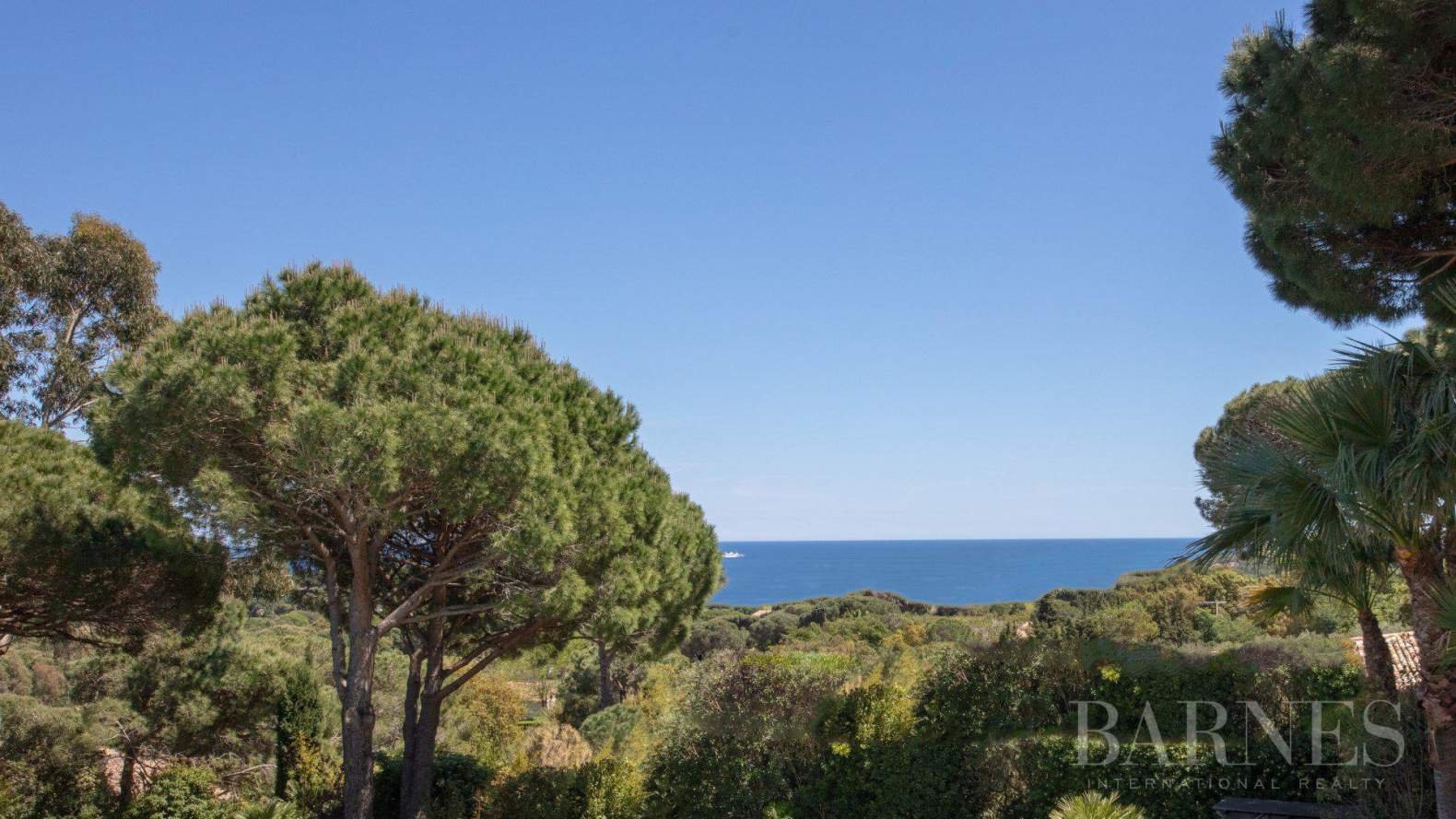 RAMATUELLE - Sea view - 6 bedrooms - Heated pool picture 5