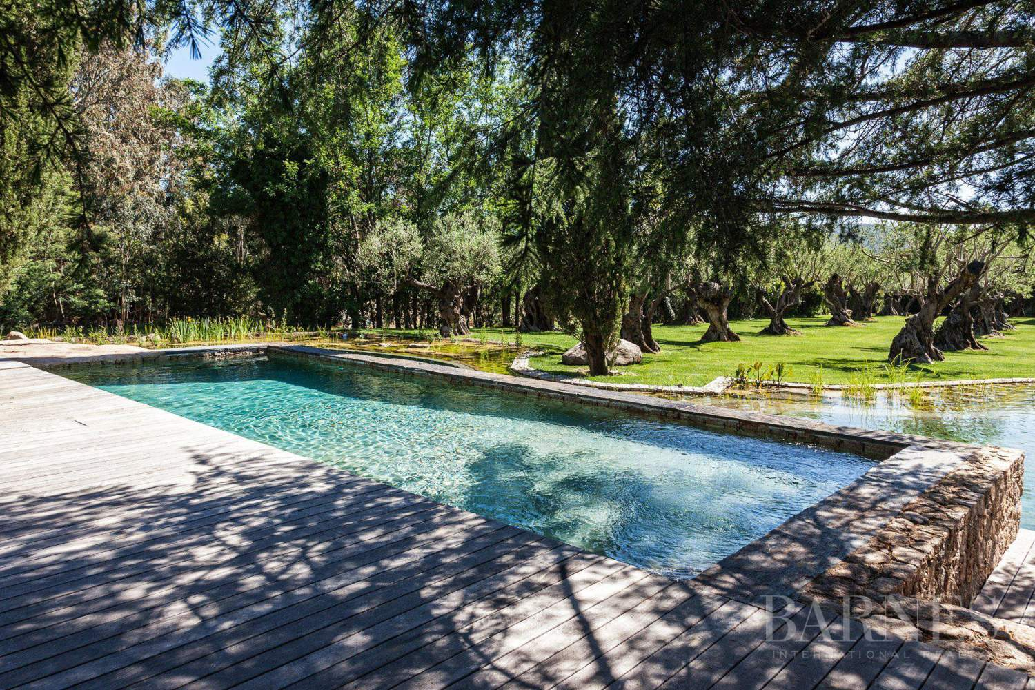 GASSIN - PEACEFUL AND CHARMING VILLA - 4 bedrooms - 2 pools picture 4