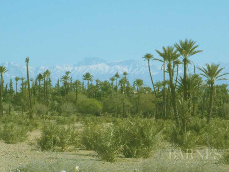 Marrakech  - Plot of land