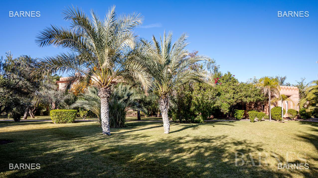 Tres Belle Property located in the Palmeraie on a well planted one hectare park. Villa Moroccan architectural style used in guest house , 12 bedrooms ... picture 6