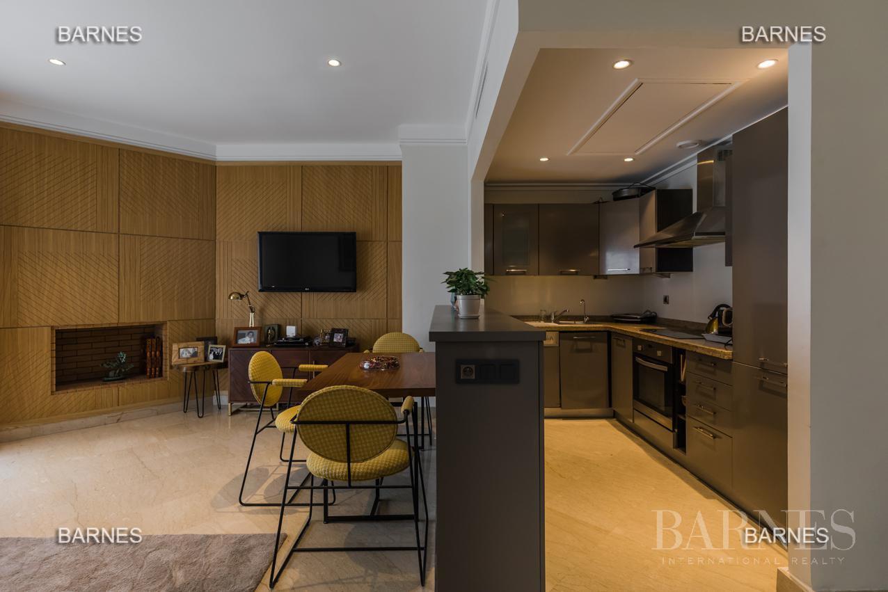 luxury apartment picture 1