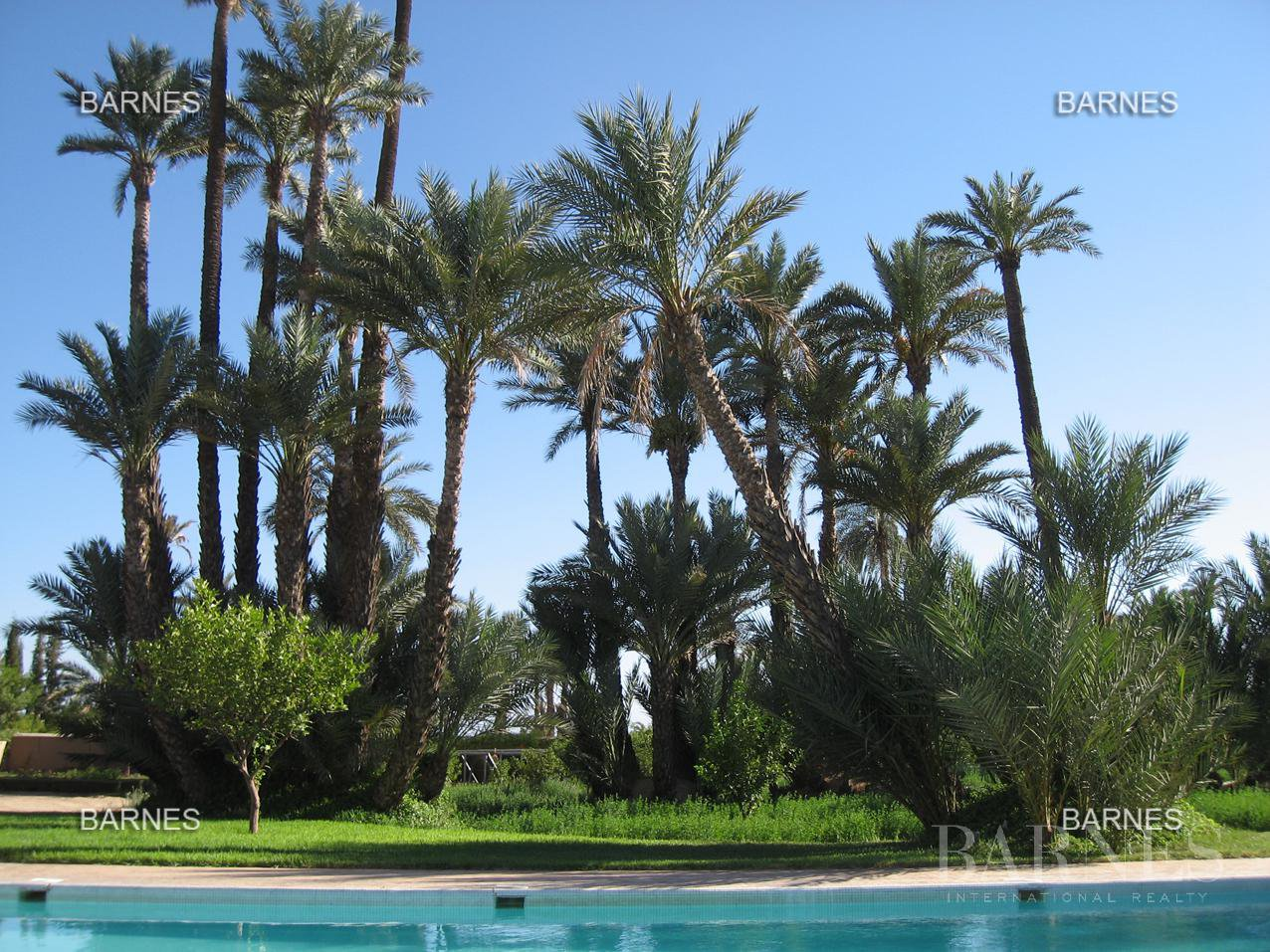 Marrakech  - Villa 7 Bedrooms - picture 3