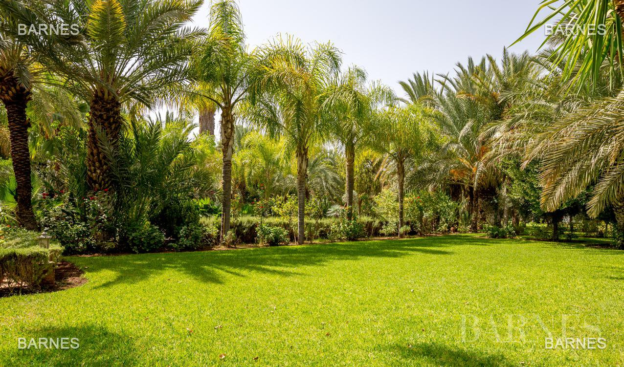 Beautiful property has the palm , real opportunity in terms of value. 6 bedrooms a hectare of land in the beautiful palm grove , nice pool . noble materials marble , cedar woodwork ... picture 18