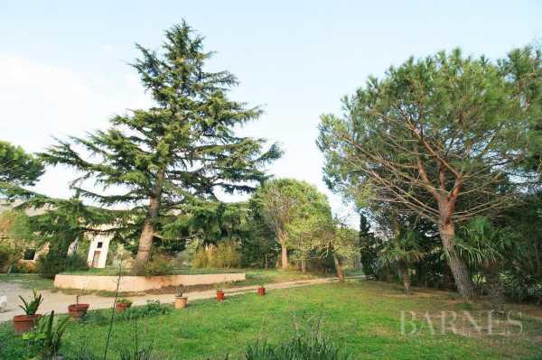 Maison Pau  -  ref 2945224 (picture 3)