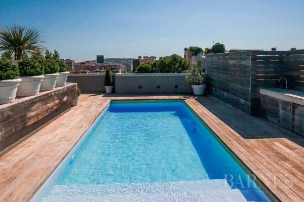 Villa on the roof Barcelona  -  ref 2945469 (picture 2)