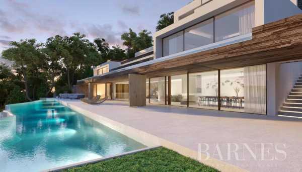 Villa Isla de Ibiza  -  ref 6074438 (picture 3)