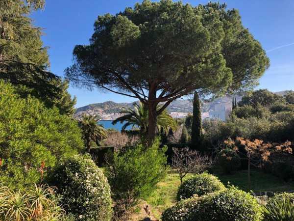 Terrain Ayto Port Selva  -  ref 2945821 (picture 1)