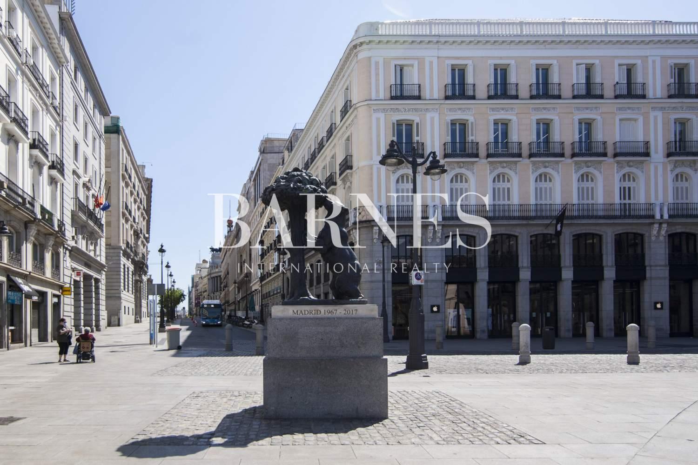 Madrid  - Loft 1 Cuarto, 1 Habitacion - picture 19