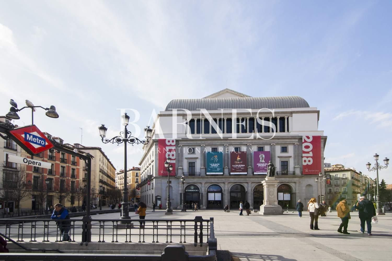 Madrid  - Loft 1 Cuarto, 1 Habitacion - picture 16