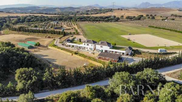 Equestrian estate Sotogrande  -  ref 4780389 (picture 1)