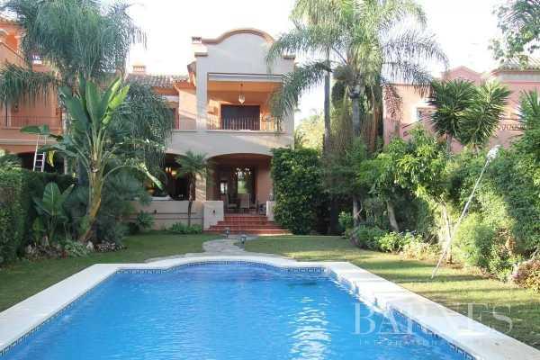 Villa Marbella  -  ref 5179291 (picture 3)