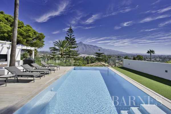 Villa Marbella  -  ref 4932232 (picture 3)
