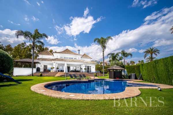 Villa Marbella  -  ref 5480791 (picture 3)