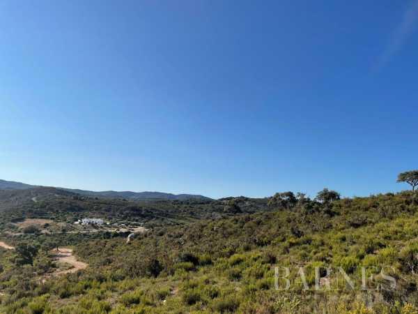 Farm Algeciras  -  ref 6059843 (picture 3)