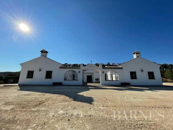 Farm Algeciras  -  ref 6059843 (picture 2)