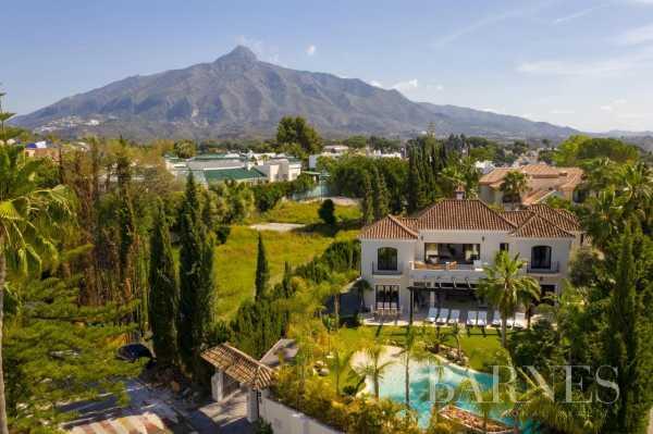 Villa Marbella  -  ref 5708925 (picture 2)