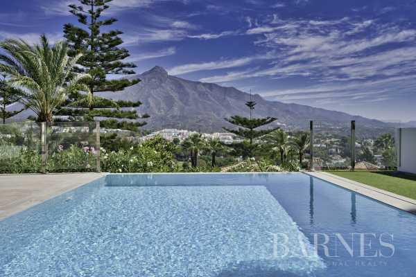 Villa Marbella  -  ref 4932232 (picture 2)