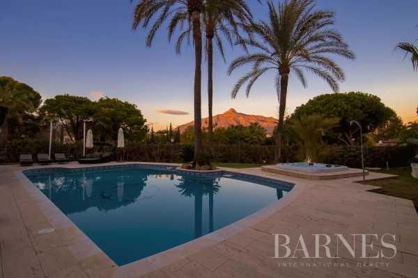 Villa Marbella  -  ref 4932976 (picture 2)
