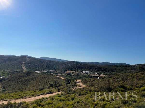 Farm Algeciras  -  ref 6059843 (picture 1)