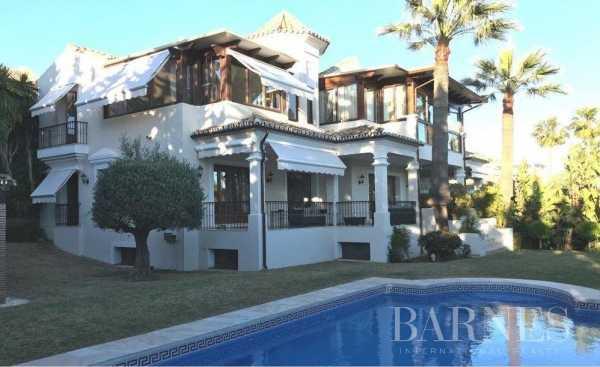 Villa Marbella  -  ref 3921330 (picture 1)