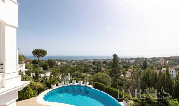 Villa Marbella  -  ref 5549828 (picture 1)