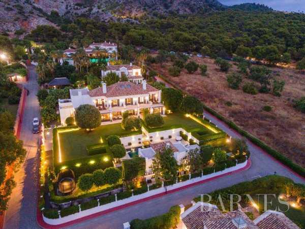 Villa Marbella  -  ref 5999307 (picture 3)