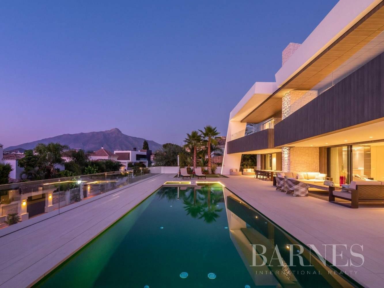 Nueva Andalucia  - Villa 20 Cuartos 5 Habitaciones - picture 4