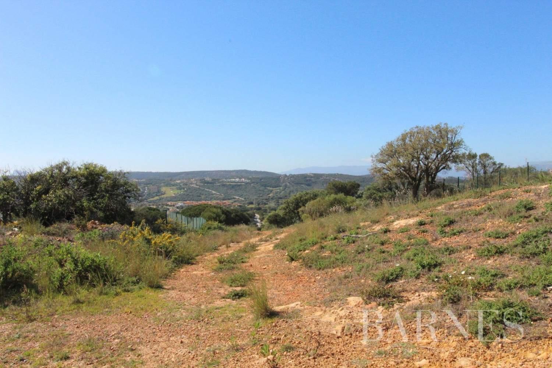 Sotogrande  - Building land  - picture 16