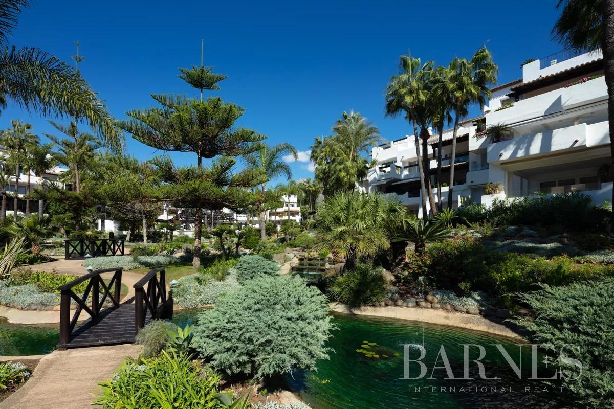 Marbella  - Piso 12 Cuartos 3 Habitaciones - picture 6