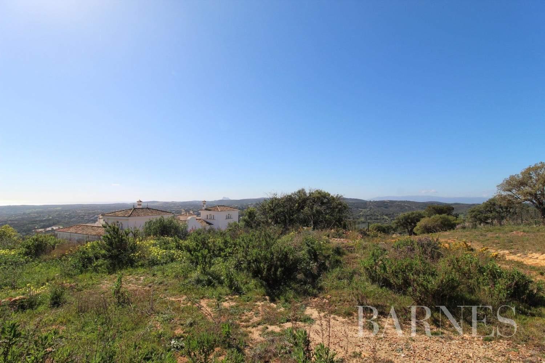 Sotogrande  - Building land  - picture 7