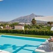 Nueva Andalucia  - Villa 20 Cuartos 4 Habitaciones - picture 6