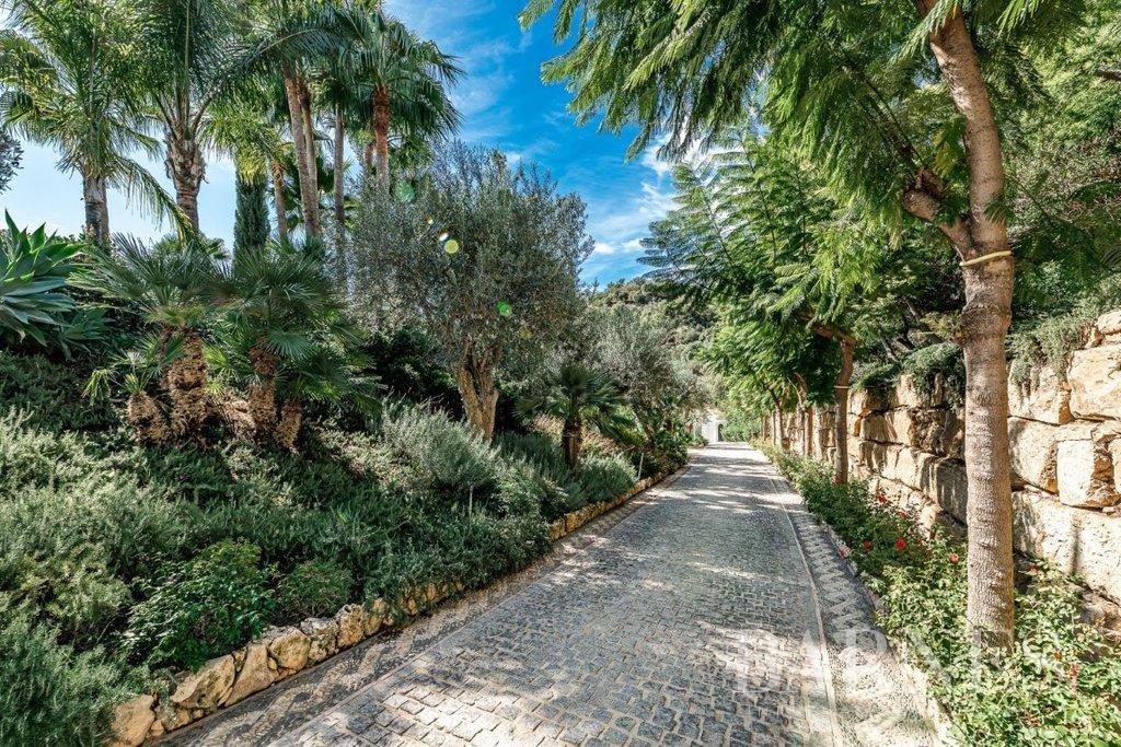 Benahavís  - Villa 30 Pièces 6 Chambres - picture 3