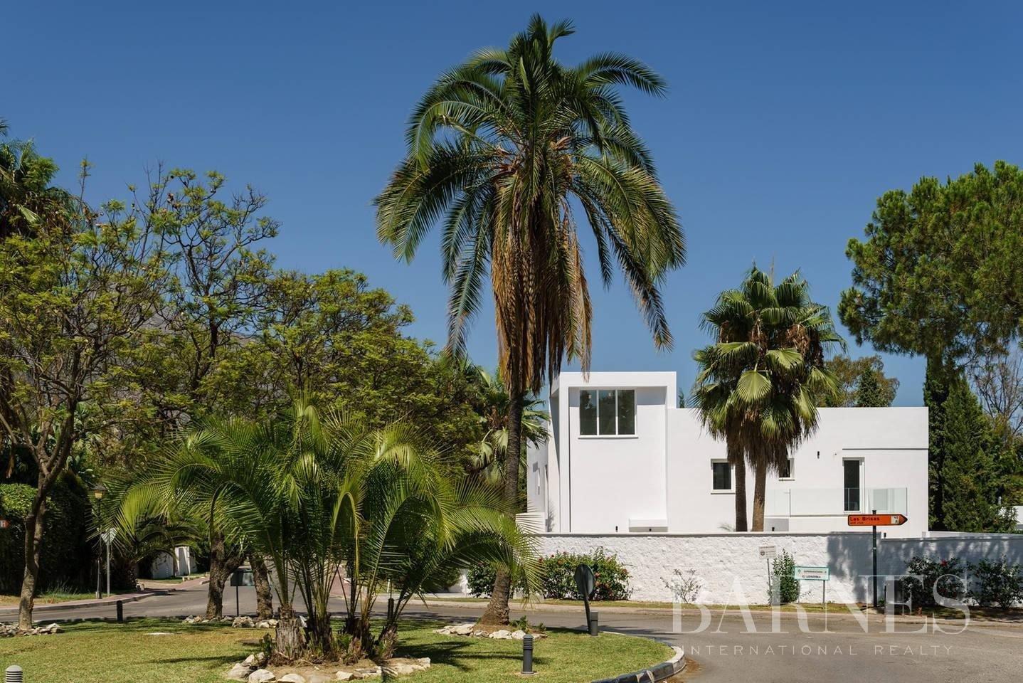 Nueva Andalucia  - Villa 20 Pièces 6 Chambres - picture 9