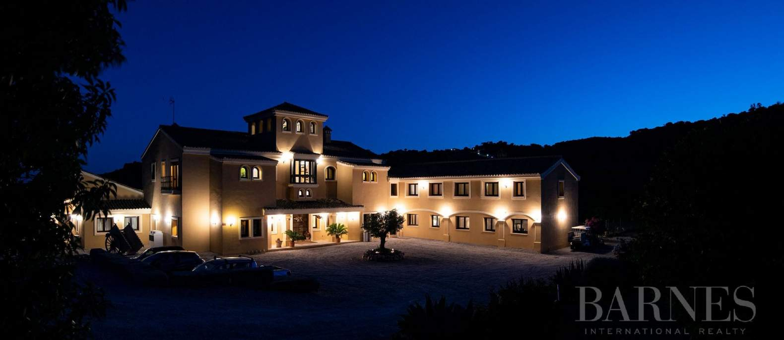 Casares  - Equestrian estate 10 Bedrooms - picture 3