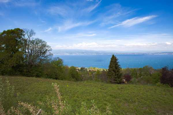 Terrain �vian-les-Bains  -  ref 2512461 (picture 2)