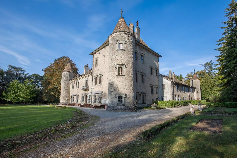 Douvaine  - Château 22 Pièces 17 Chambres - picture 2
