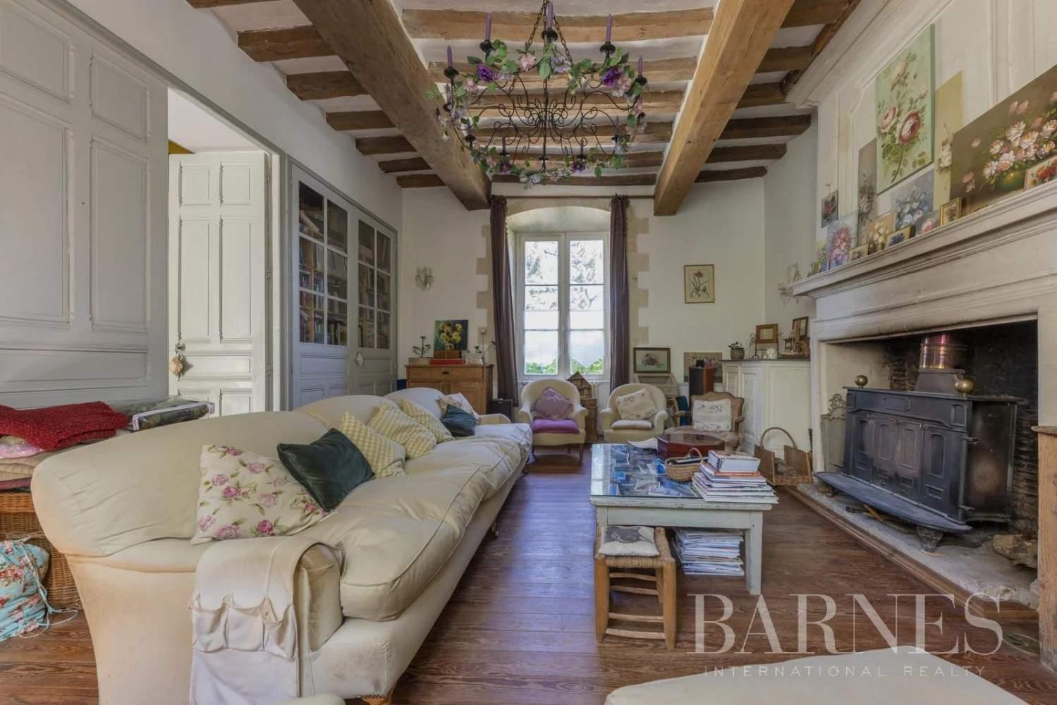 Sucé-sur-Erdre  - Manoir 13 Pièces 6 Chambres - picture 11