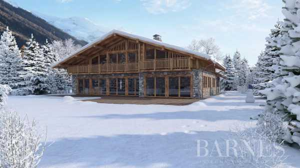 Chalet Chamonix-Mont-Blanc  -  ref 5807974 (picture 3)