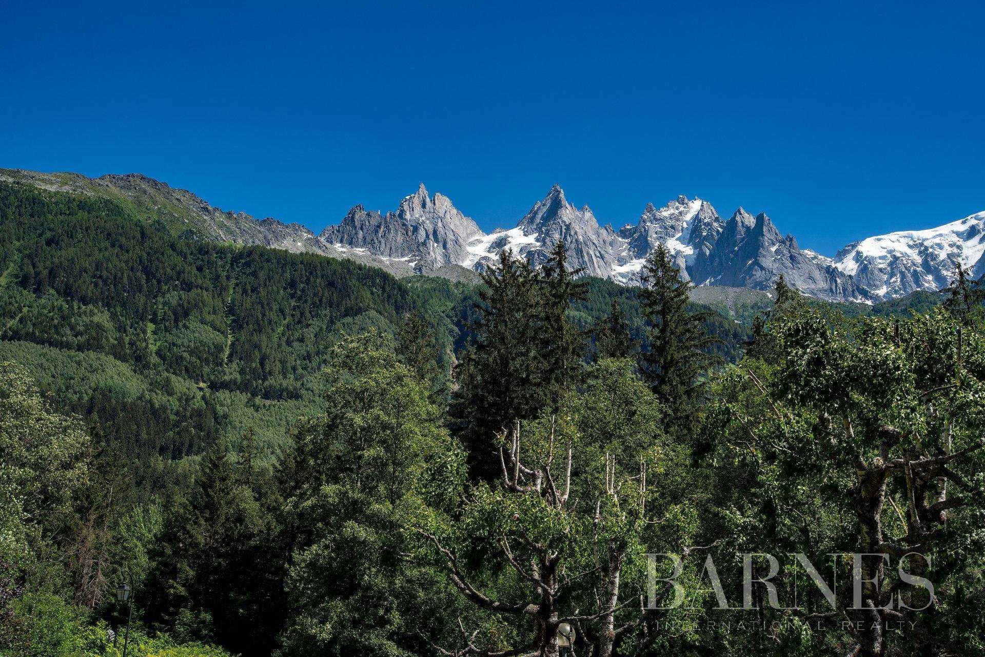 Apartment Chamonix-Mont-Blanc  -  ref 2930629 (picture 2)