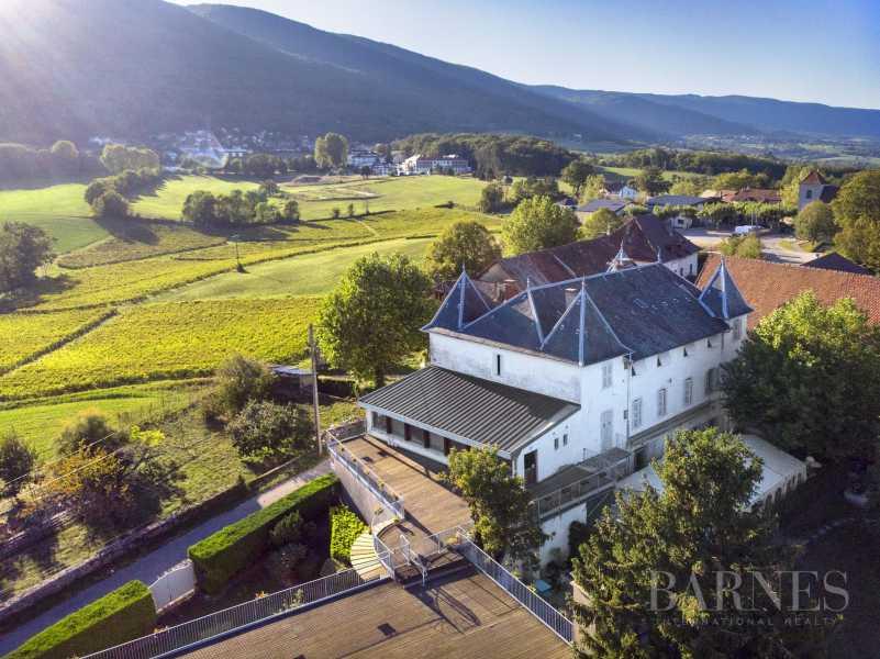 Hotel Chateau entre Chautagne et le Lac de Bourget picture 10