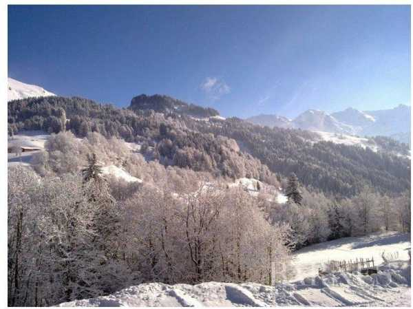 Chalet Le Grand-Bornand  -  ref 2666418 (picture 3)